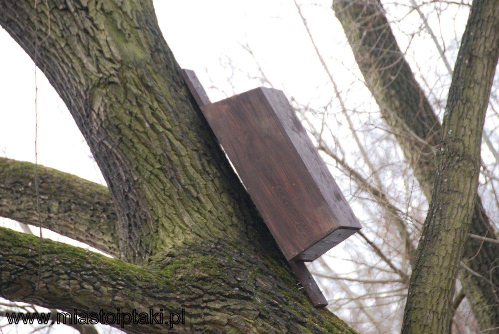 Budka-komin dla kaczek lub nurogęsi
