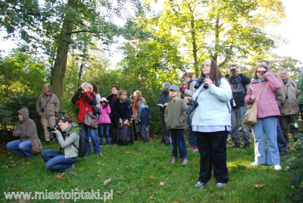 EDP 2010 w parku Skaryszewskim