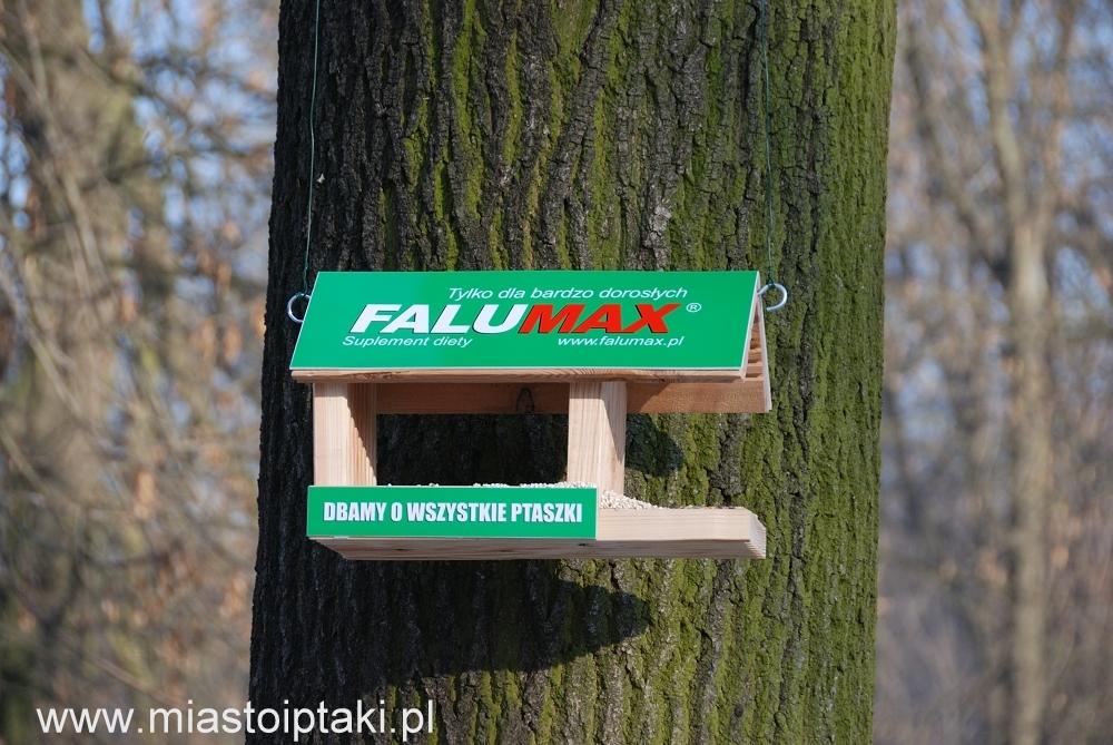 Gustowny karmik sponsorowany w parku Skaryszewskim