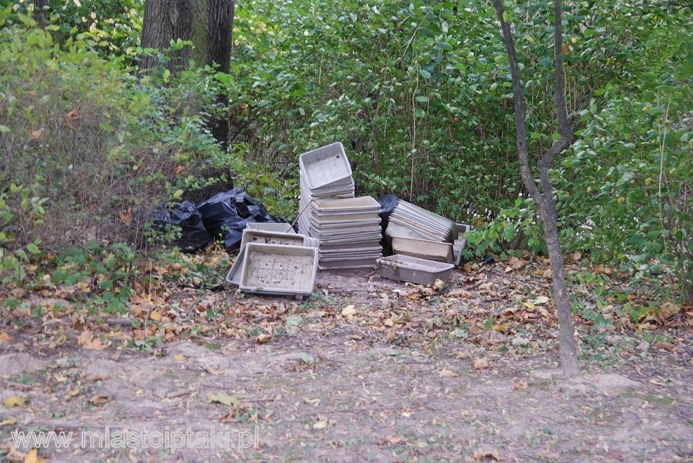 Wyrzucone w krzaki śmieci pozostałe po dosadzaniu kwiatów na wiosnę – zdjęcie z października