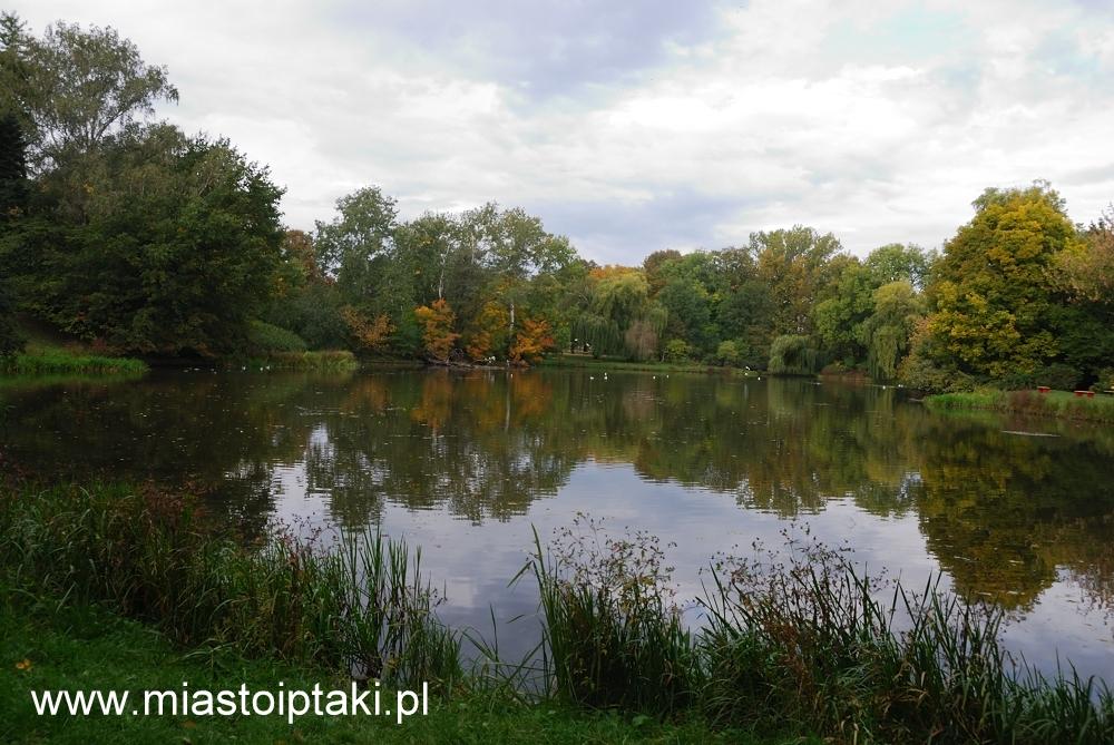 Park Skaryszewski jesienią
