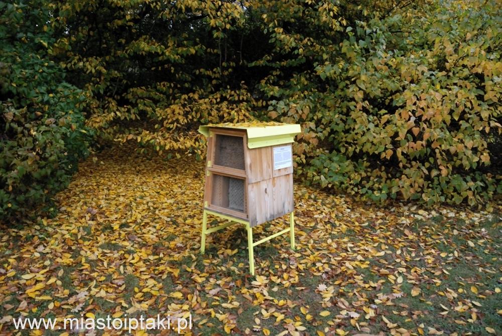 Hotel dla pszczół w parku Skaryszewskim